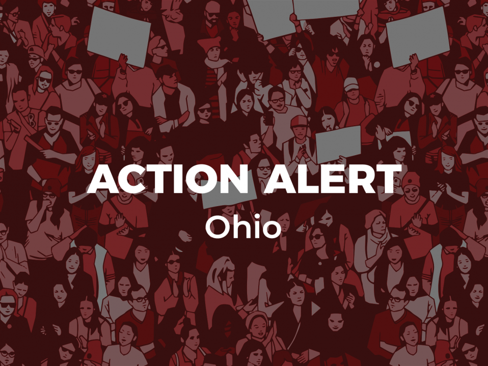 Legislative Action Alert Bill To >> Action Alert Protect Young Women From Disfiguring Religious